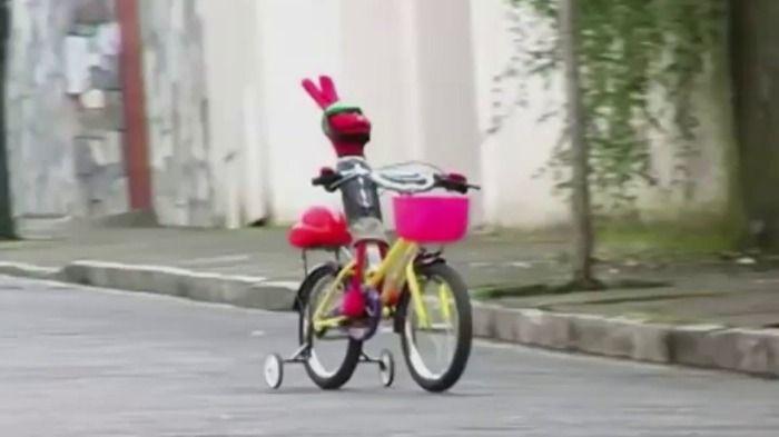 Juan carlos bodoque tiene un accidente en su bicicleta